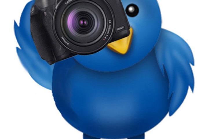 On twitter! 2
