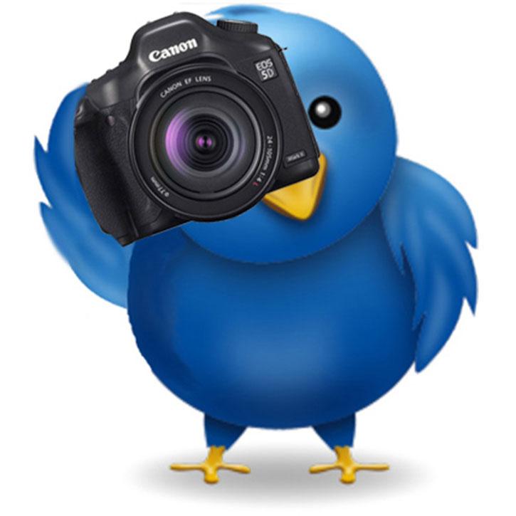On twitter! 8